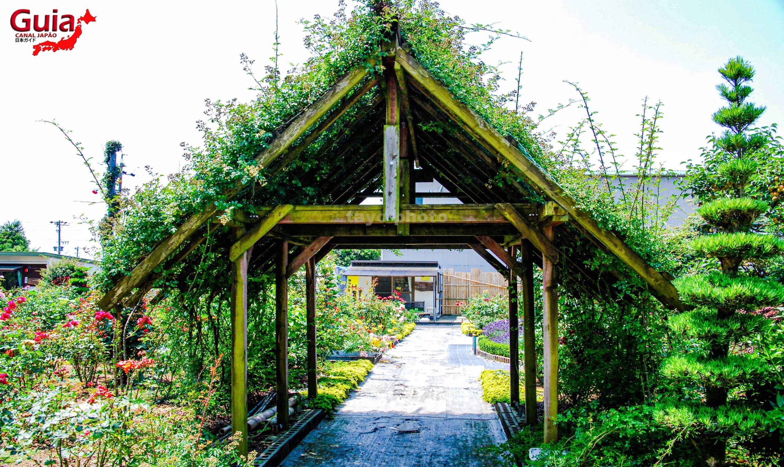 Jardim de Rosas - Bara no Miyako-en 12