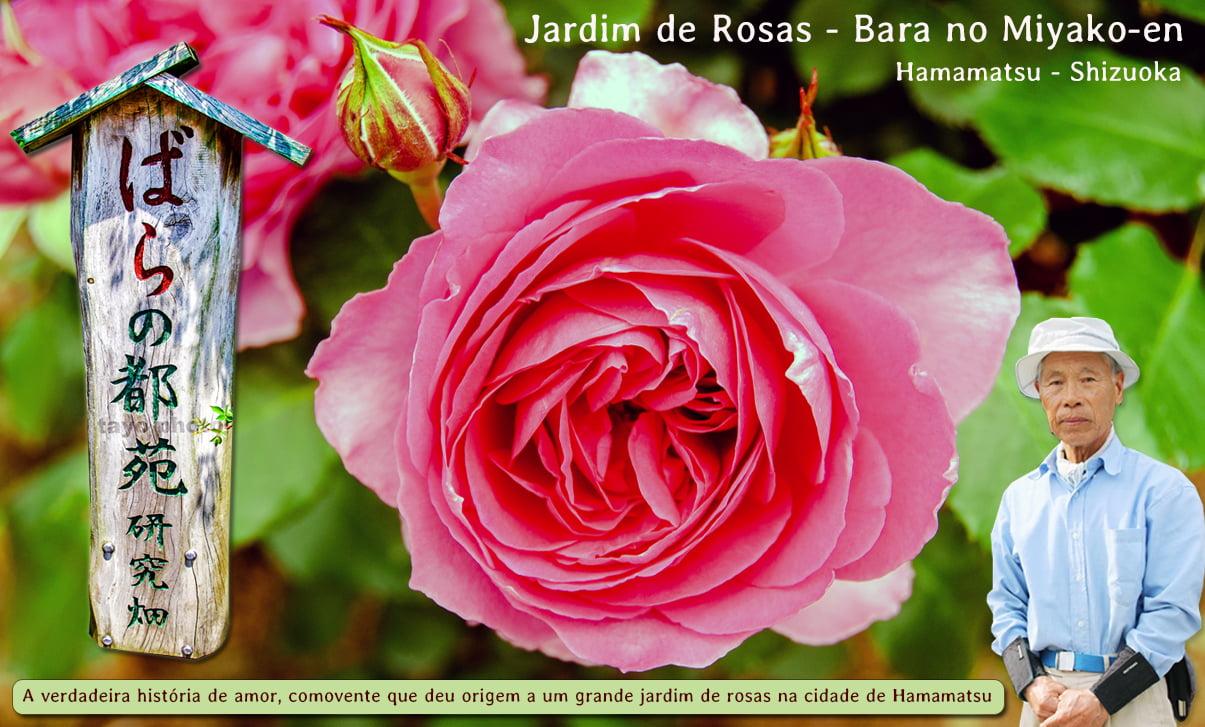 Jardim de Rosas - Bara no Miyako-en 1