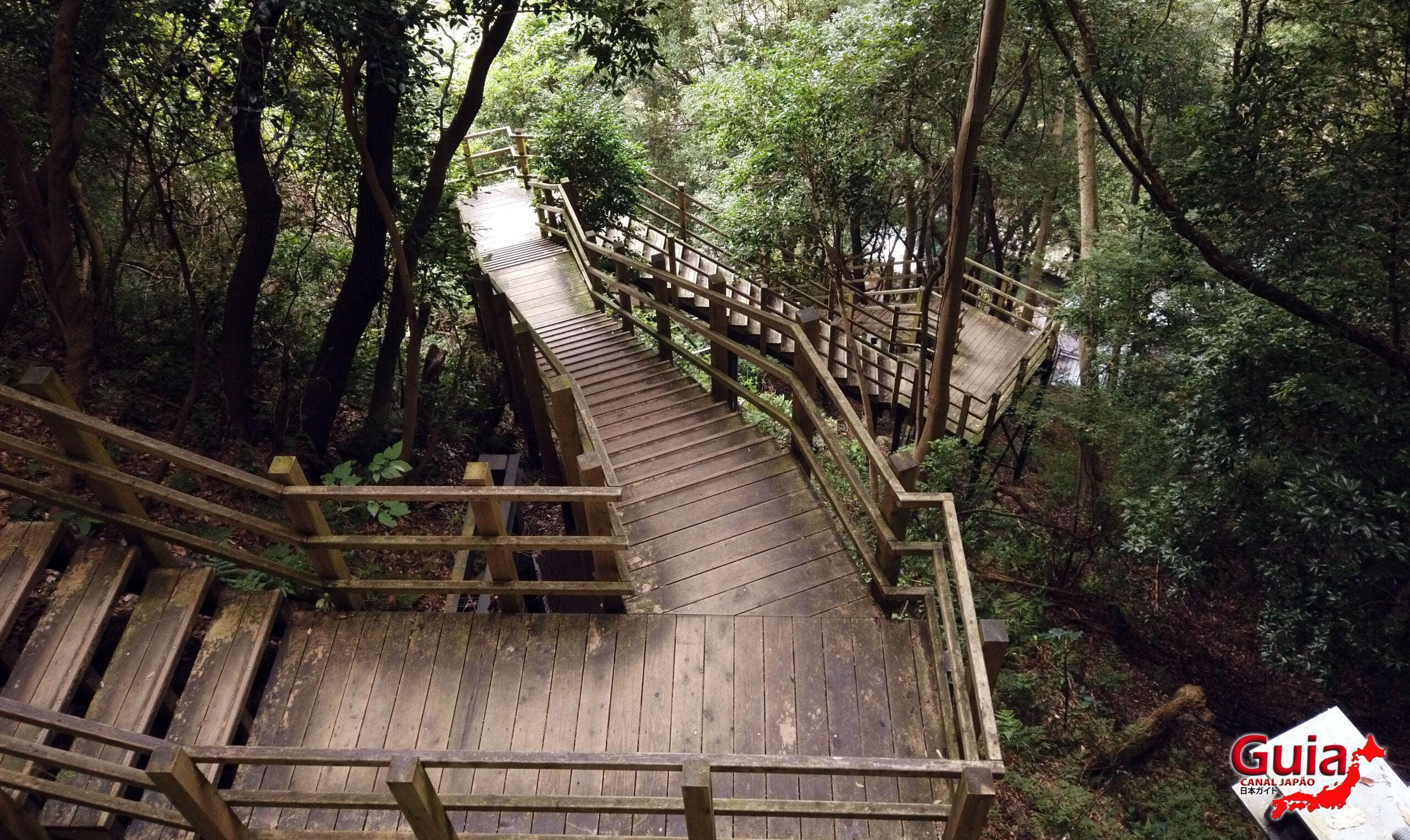 7 Cachoeira de Kawazu Nanadaru - 河津 七 滝 6
