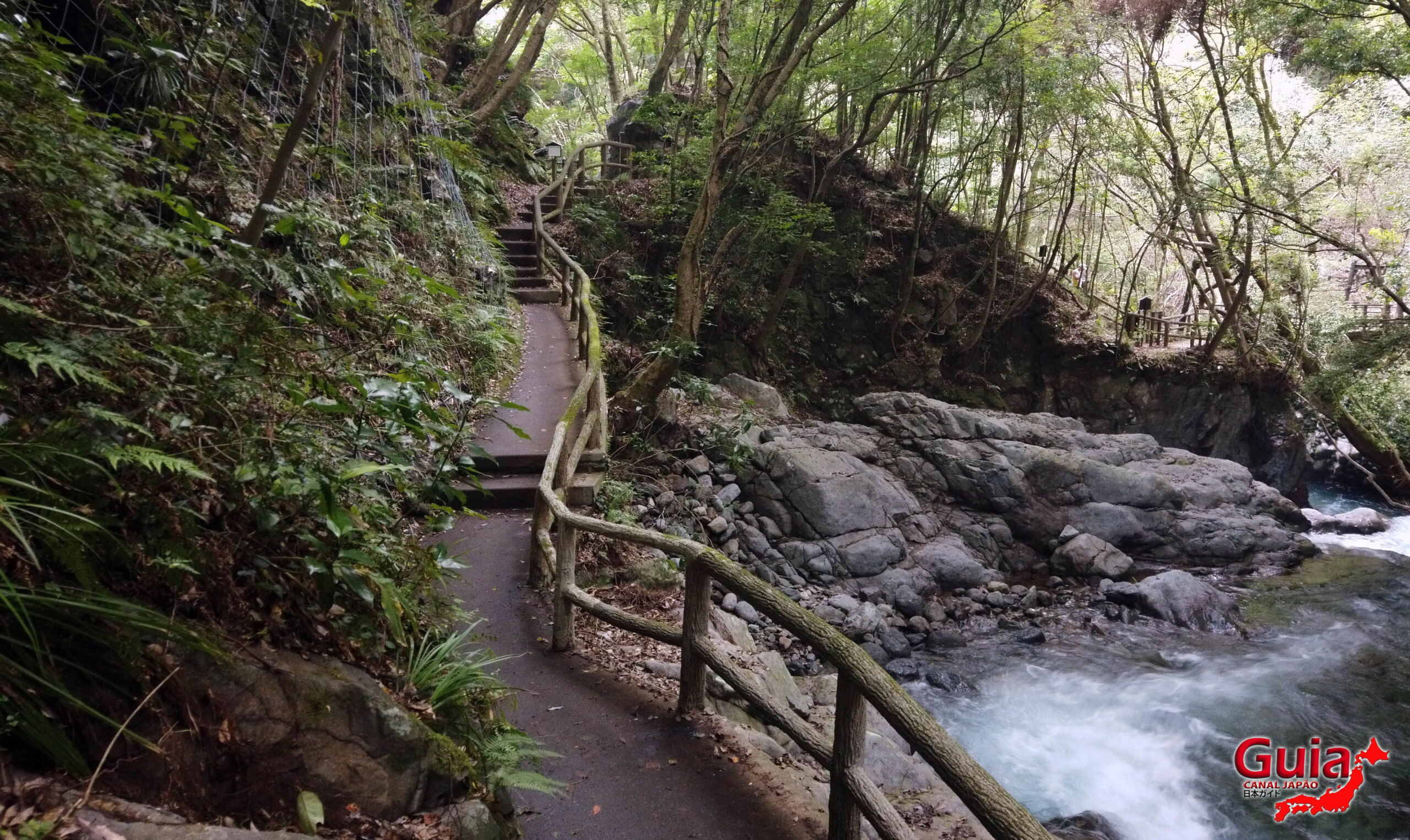 7 Cachoeira de Kawazu Nanadaru - 河津 七 滝 10