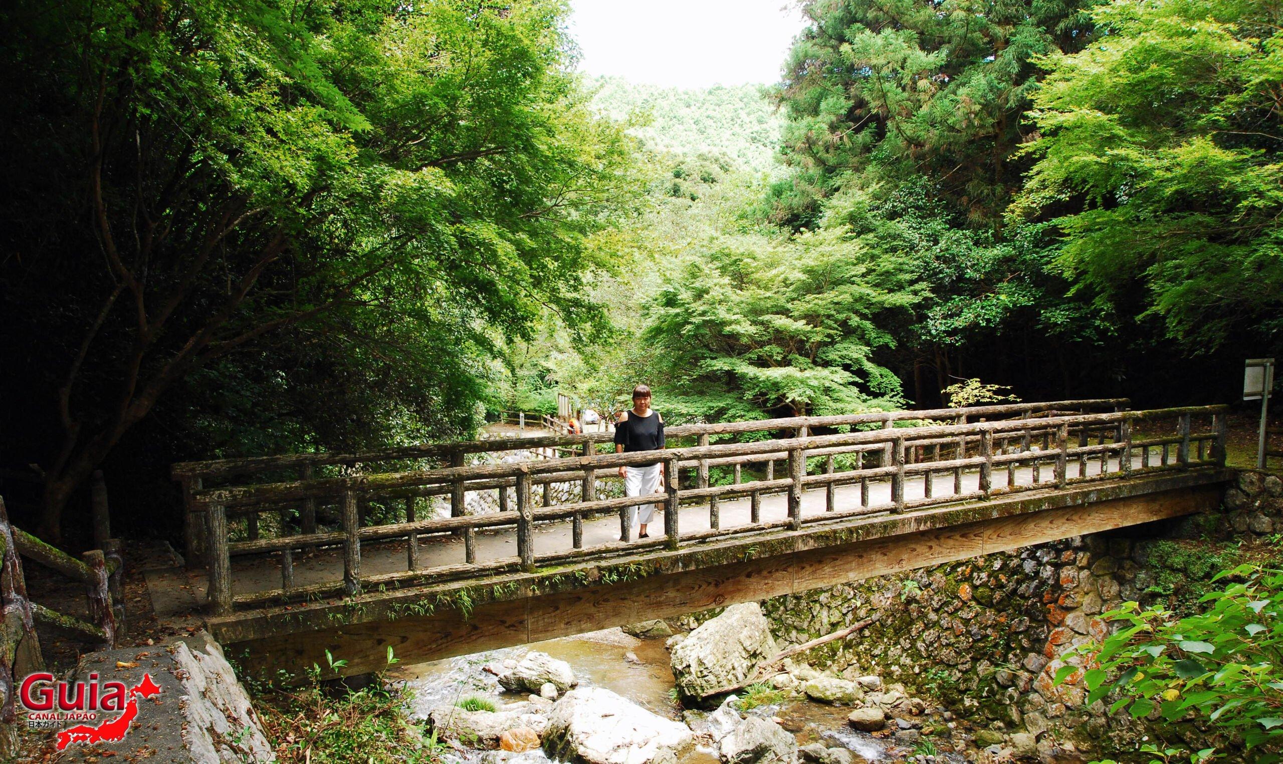 Cachoeira Sengen - 仙厳の滝 10